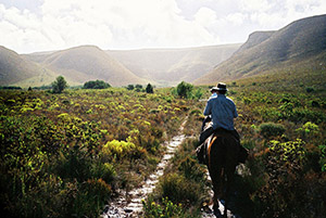 Horse riding near De Kelders South Africa