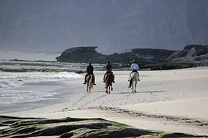 Horse riding on the beach near De Kelders South Africa