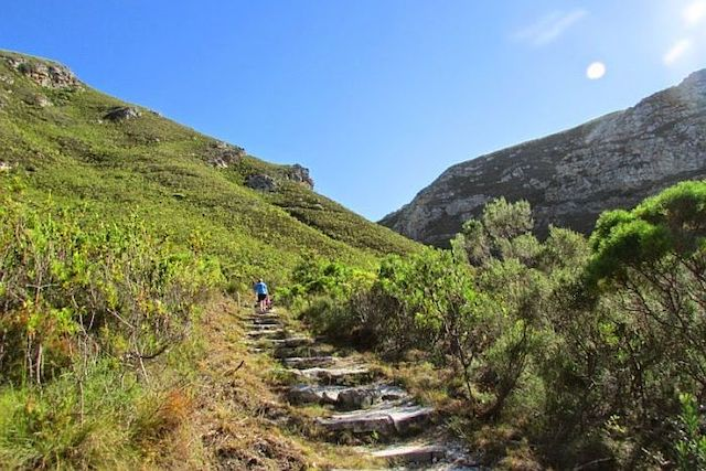 Hiking in Fernkloof Nature Reserve Hermanus