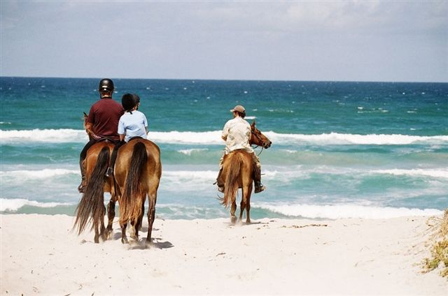 Horse riding on the beach De Kelders South Africa